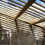 new chestnut timber