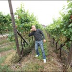 me and the sauvignon grapes